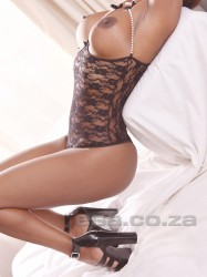 Click Exotica No.1's picture for more information