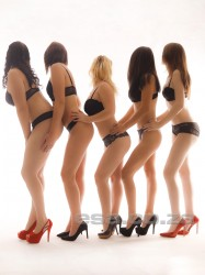 , escorts in , West Rand/Florida